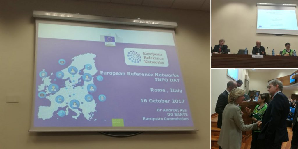 European Reference Networks Info Day: Italy 'key player' in Europe in fighting rare diseases